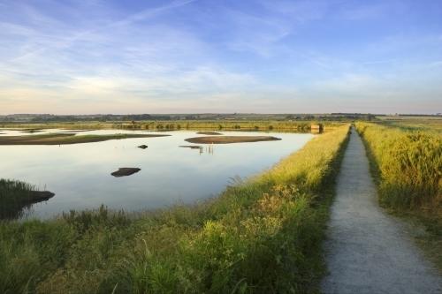 Titchwell Marshes, Norfolk by Richard Osbourne