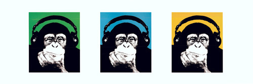 Monkey by Steez