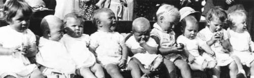A Baby Show Line-up by Babies Collection