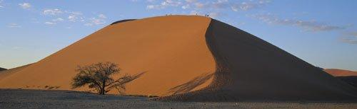 Dune 45, Namibia by Paul Franklin