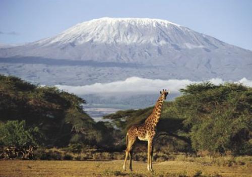 Kimana Area - Kenya by Daryl Balfour