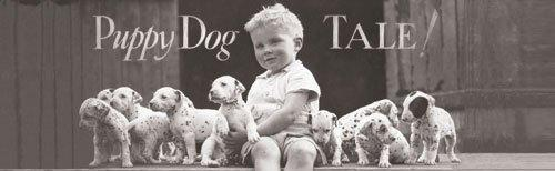 Puppy Dog Tale by B & W Collection