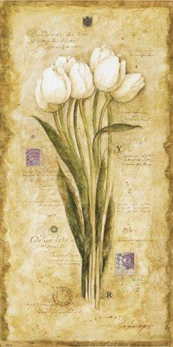 Tulip and Stamps by Hervé Libaud