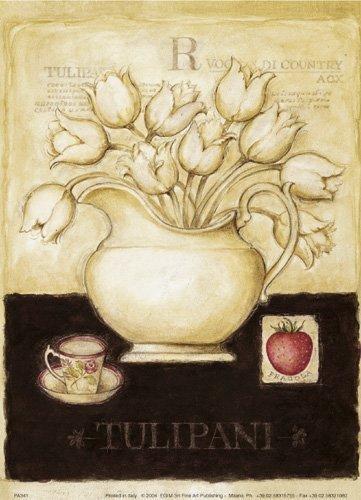 Tulipani by G.P. Mepas