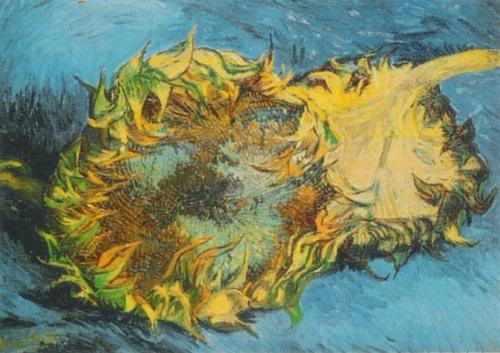 Sunflowers, 1887 by Vincent Van Gogh