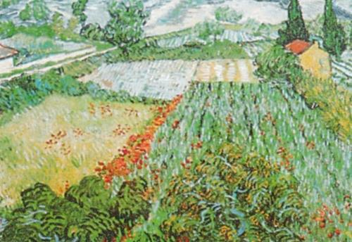 Field of Poppies by Vincent Van Gogh