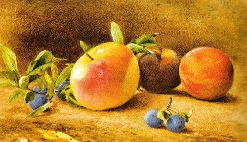 Study of Fruit, 1877 by John William Hill