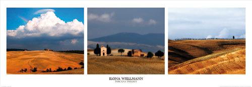 Toscana Trilogy by Ilona Wellmann