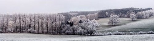 Winter Panorama by Ilona Wellmann