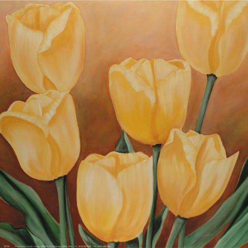 Tulip II by Erik de André