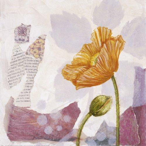 Poppy II by Olivia Celeste