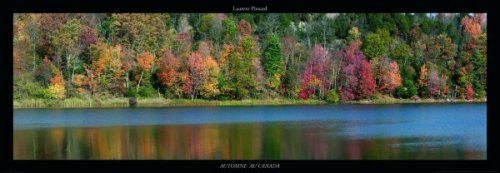 Automne au Canada by Laurent Pinsard