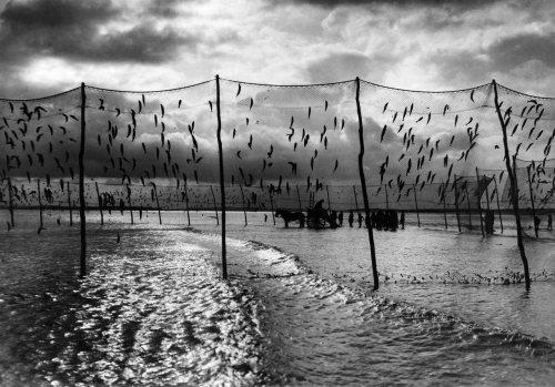 Fishing nets, Rye Bay Sussex 1930 by Mirrorpix