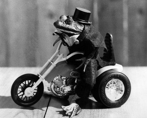 Biker...Gladys takes to two wheels by Mirrorpix