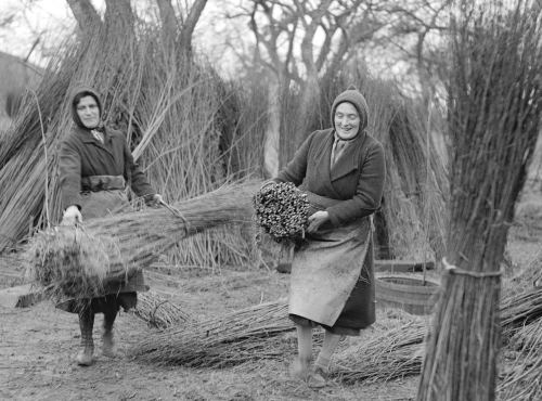 Basket makers, 1944 by Mirrorpix