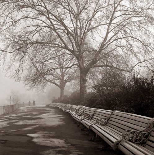 Park Benches lined up by Mirrorpix