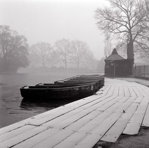 Boats lined up at a lake in an english park by Mirrorpix