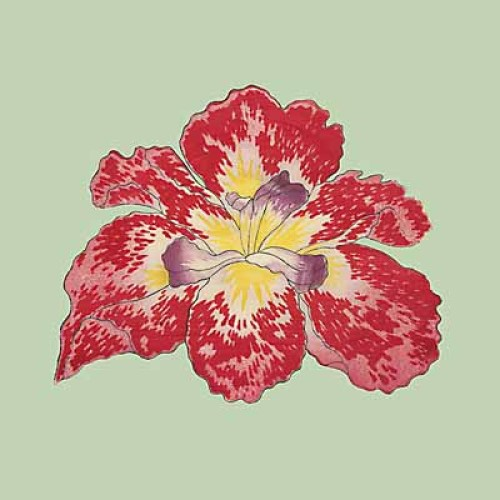 Pop Irises I - IV, Pop Iris II by Modern Editions
