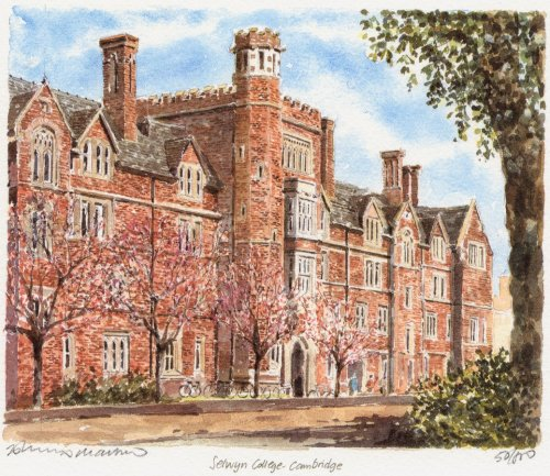 Selwyn College by Philip Martin