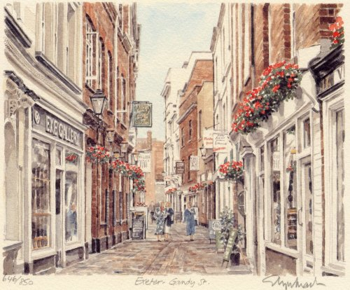Exeter - Gandy Street by Glyn Martin