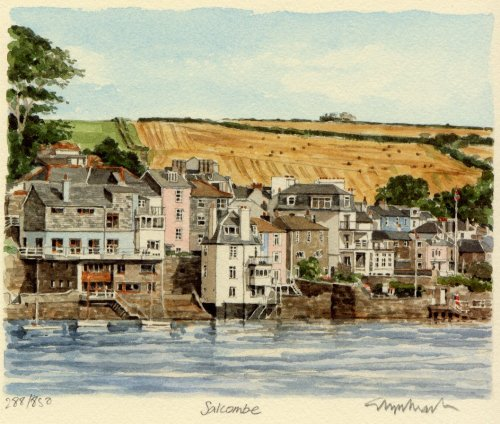 Salcombe - from estuary by Glyn Martin