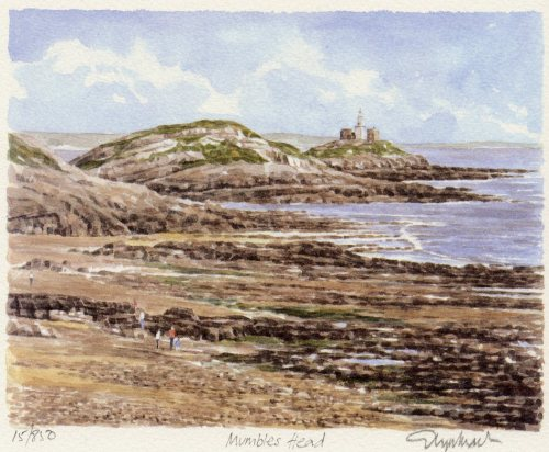 Mumbles Head by Glyn Martin