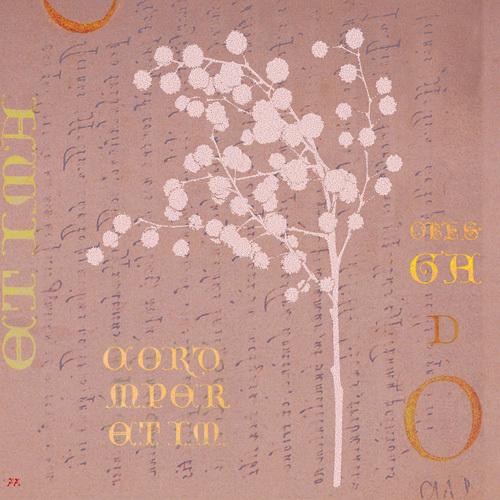 Mimosa Square II by Katja Marzahn