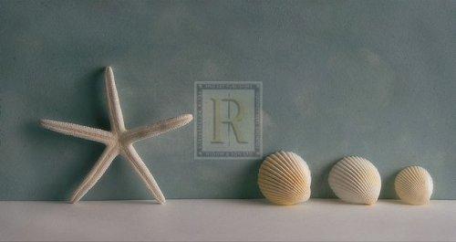Starfish II by Bill Philip