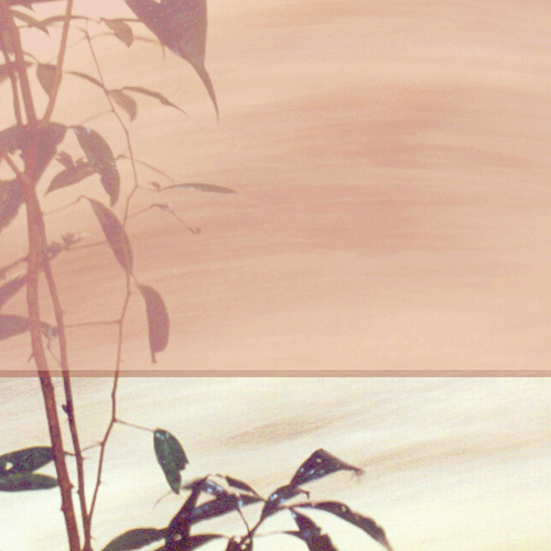 Bamboo Square II by Suzie Pibworth
