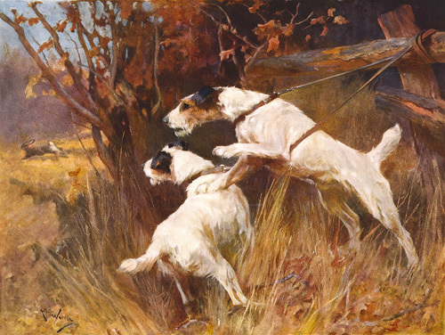 Hard Luck Boys by Arthur Wardle
