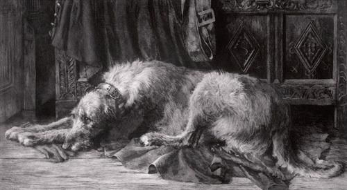 Irish Wolfhounds by Herbert Thomas Dicksee