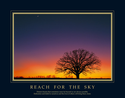 Reach For The Sky by Anonymous