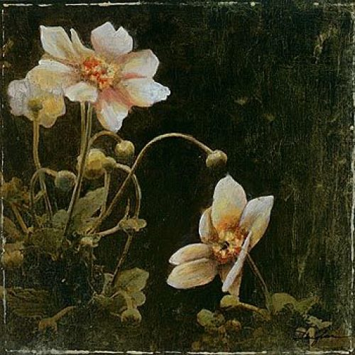 Midsummer Night Bloom I by John Douglas