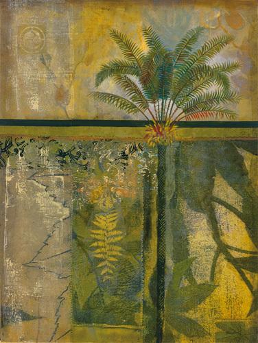 Equatorial Beauty I by John Douglas
