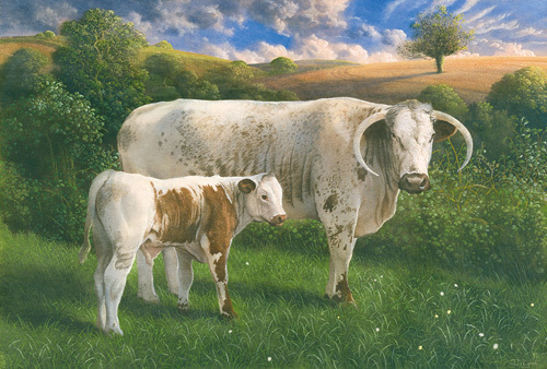 Longhorn Cow and Calf by James Lynch
