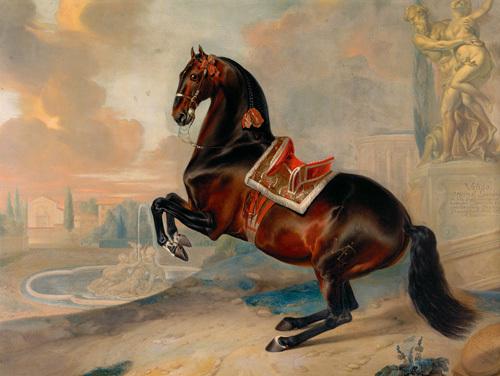 Valido by Johann George Hamilton