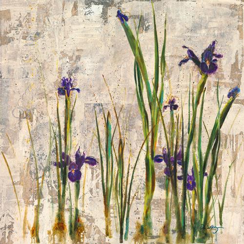 Iris Mist by Dennis Carney