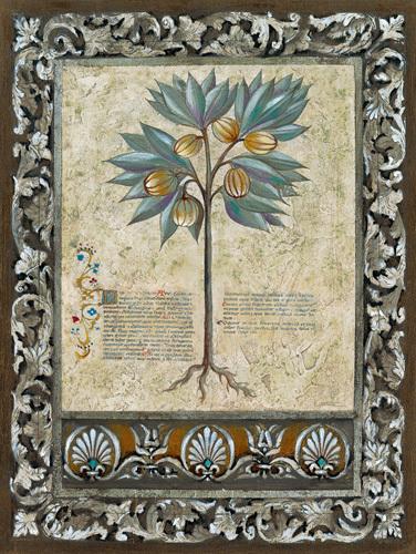 Fresco Botanica III by Jen Kirstein
