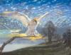 Barn Owl by John Cooksley