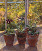 Pansies in Flowerpots by John Morley