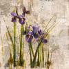 Spring Mist I by Dennis Carney