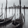 Venetian Gondolas III by Bill Philip