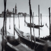 Venetian Gondolas IV by Bill Philip