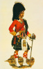 The Seaforth Highlanders by A.E. Haswell Miller