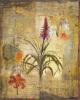 Dans les jardine II by John Douglas