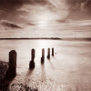 Spring Tide II by Bill Philip
