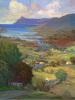 The colour or Ireland by Hugh O'Neill