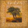 Eden XII by John Douglas