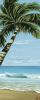 Palm Break by Tillack