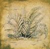 Rain Forest Study II by Susan Gillette